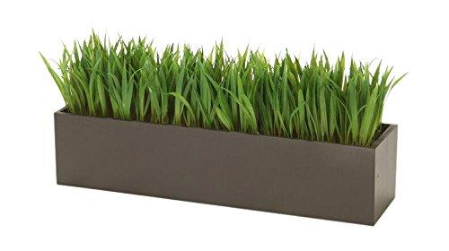 Distinctive Designs Grass in Rectangular Wood Box