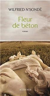 Fleur de béton : roman, N'Sondé, Wilfried