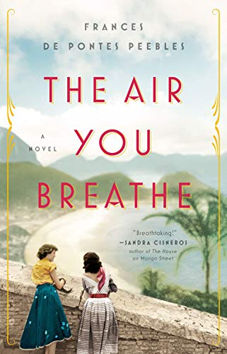 The Air You Breathe: A Novel