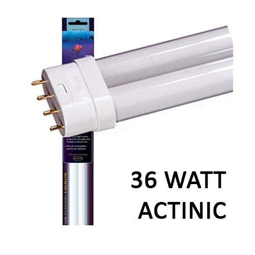 (MRT SUPPLY 36W ACTINIC Straight PIN PC LAMP 16 INCH Bulb BIOCUBE 29 - Blue Color with Ebook )