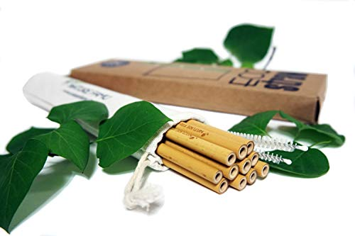 Nature Famu ?9 BAMBOO DRINKING STRAWS ALTERNATIVE TO PLASTIC KIDS AND ADULTS?REUSABLE?100% ORGANIC?12 PEACES ?2 CLEANING BRUSHES ?ECO FRIENDLY?BPA FREE?NON TOXIC