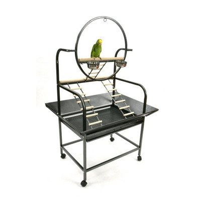 "The ""O'' Parrot Play Stand Color: Black by A&E Cage Co."