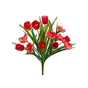 "18.5"" Tulip/Crocus Bush x13 Beauty Pink (pack of 12) 9"