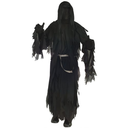 Rubie's Costume Lord Of The Rings Ringwraith, Black, One Size (Wrath Costume Men)