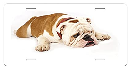 I LOVE MY OLDE VICTORIAN BULLDOGGE License Plate Frame Auto Accessories Frames