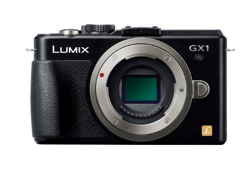 Panasonic Lumix Dmc-gx1 16.0 Mp Digital Camera - Silver (Body Only)