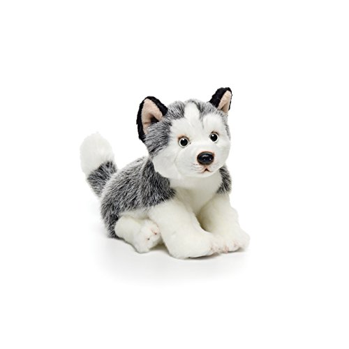 Nat and Jules Alert Small Husky Dog Children's Plush Stuffed Animal Toy