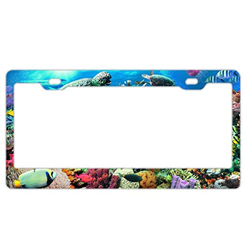 Reef License Plate - Hopes's Stainless Steel Metal License Plate Frame Women,Funny License Plate Holder - Ocean Reef and Fish Dolphin