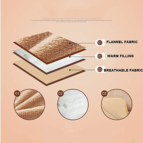 KELE Franela Gruesas Funda de colchón Tatami Cojín Protector,Hipoalergénico Plegable Antideslizante de colchón Cama de colchón Topper Doble-A 90x190x5cm: ...