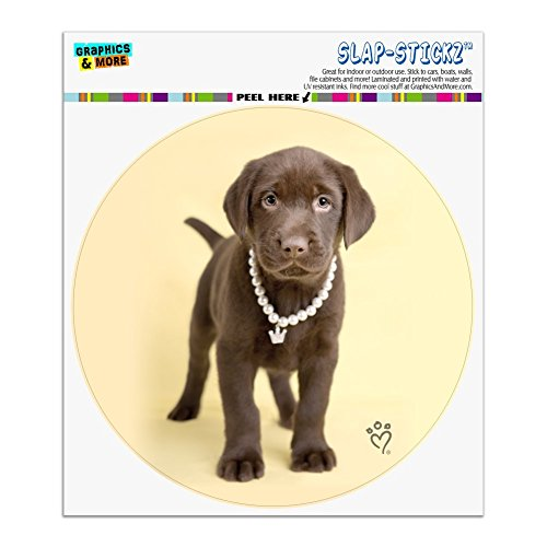 Labrador Sticker Chocolate (Graphics and More Chocolate Lab Labrador Puppy Dog Crown Necklace Automotive Car Window Locker Circle Bumper Sticker)