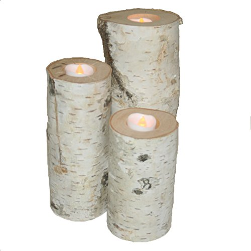Cheap Birch Candle Holders – Set of 3