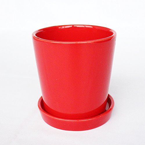 Better-way Orchids Pots with Holes Modern Decorative Ceramic Flower Plant Pot with Saucer Home Office Desk Mini Succulent Cactus Container Indoor Decoration (4 inch, Red)