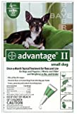 Premium Pet Products 04461707 Advantage II For Small Dogs, Green, 4-Pk. - Quantity 12