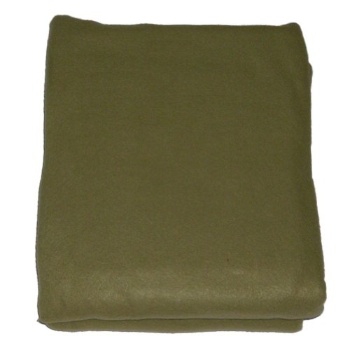 shopko-twin-soft-green-fleece-blanket-single-bed-bedding