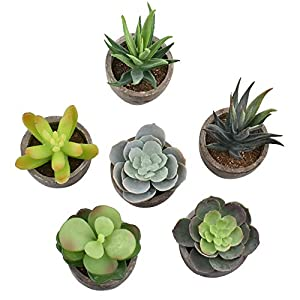 EWONICE Decorative Assorted Potted Succulents Plants Mini Artificial Succulent Plants Potted Faux Cactus Aloe with Gray Pots Artificial Topiary Plant Potted Home Decoration Gift, Set of 6 2