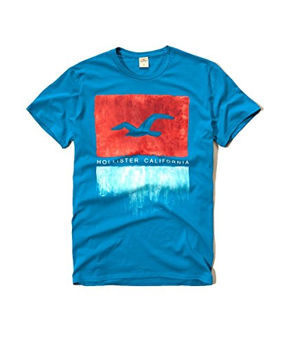 hollister-mens-graphic-logo-t-shirt-large-turquoise-seagull