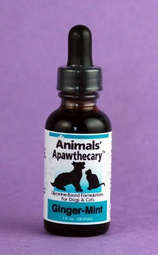 0ANIV Animals' Apawthecary Ginger-Mint for Dogs and Cats, 1oz by 0ANIV