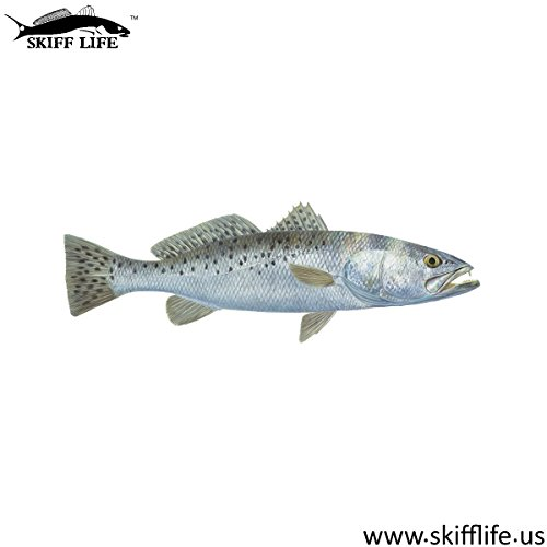 Skiff Life Speckled Sea Trout Decal Fish Sticker Randy McGovern Art ()