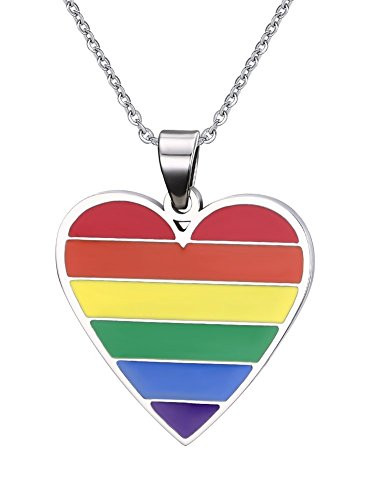 Stainless Steel Love Heart Pendant Necklace LGBT Gay Pride Lesbian Rainbow Flag Jewelry