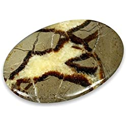 CrystalAge Septarian Palm Stone