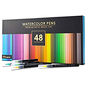 Gift Box : 48 Premium Watercolor Brush Pens, Highly Blendable, No Streaks, Water Color Markers, Unbelievable Value, Water Brush Pen, for Beginner to Professional Artist (48 Colors Brush Pens)