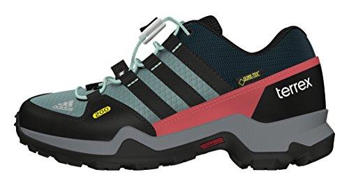 adidas Terrex Gtx K, Zapatillas de Senderismo para Niños Varios Colores (Acevap / Negbas / Vertec)