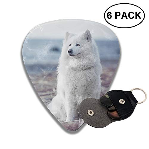 (Animal Samoyed Dogs Celluloid Guitar Picks 3 D Print Cool 6pcs 0.46mm 0.71mm And 0.96mm)