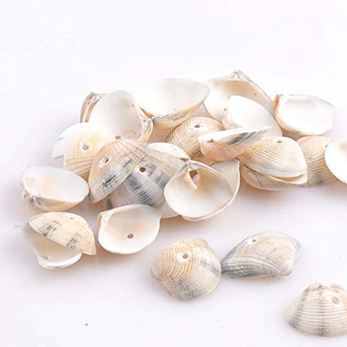 - Beads For Jewelry - Hole Spiral Shell Loose Bead Jewelry Home Craft Decoration Accessory 50pcs 20x26mm Trs0135 - Carapace Ocean Deep-Sea Eggshell Oceanic Racing Oversea Suboceanic