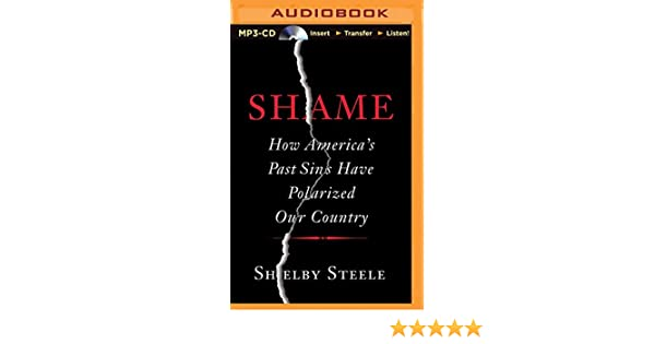 Shame How Americas Past Sins Have Polarized Our Country Shelby