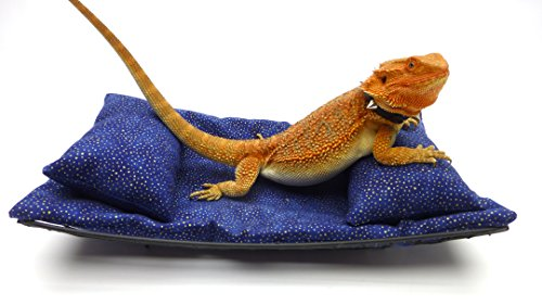- Chaise Lounge for Bearded Dragons, Blue Gold Metallic Fabric
