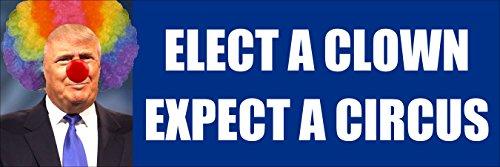 American Vinyl Blue Elect a Clown Expect a Circus w/Clown Hair Bumper Sticker (Anti Trump Left no)