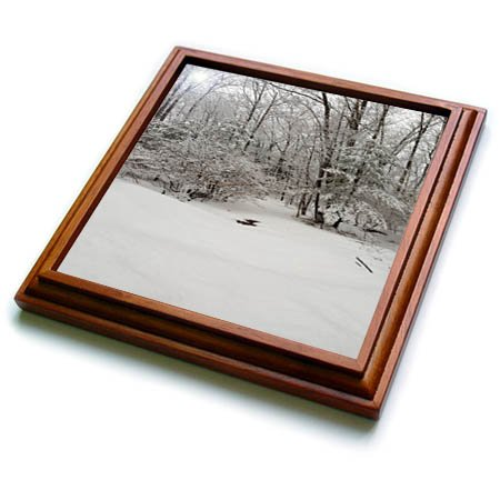 3dRose TDSwhite - Winter Seasonal Nature Photos - Scenic Winter Weather Woodlands - 8x8 Trivet with 6x6 ceramic tile (trv_284900_1) ()