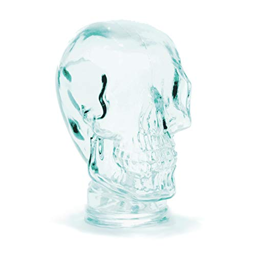 Glass Mannequin - Recycled Spanish Glass Heads for Decoration, Headphone Stand, and More - Assorted Styles and Colors from Cerebrum Shoppe (Skull - Clear Green)