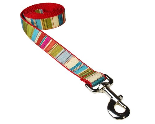 Sassy Dog Wear 6-Feet Red/Multi Stripe Dog Leash, Medium from Sassy Dog Wear