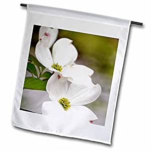 PS Flowers - Sweet Spring Dogwood Flowers - White Floral Photography - 12 x 18 inch Garden Flag (fl_51425_1)