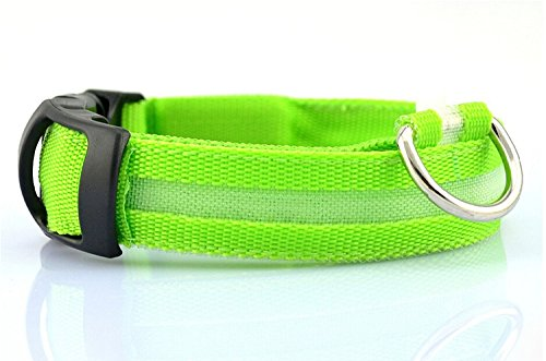 (Liroyal Nylon LED Dog Night Safety Collar Flashing Light up W/circular Pendant Collar Green)