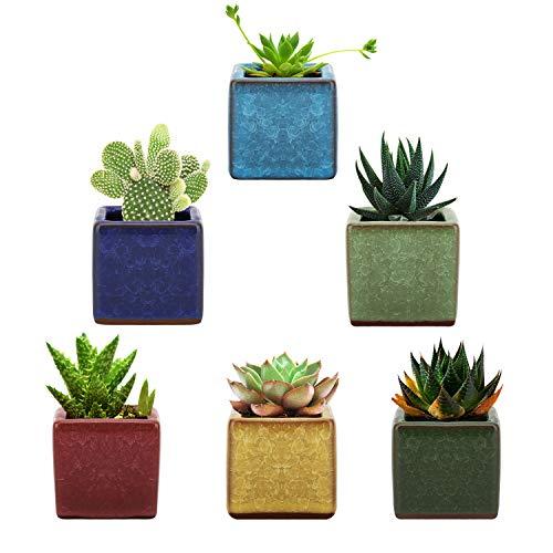 Lewondr Succulents Flowerpots, [6 Pack] 2.5 Inch Square Design Ceramic Ice Crack Serial Flower Pot Bonsai Plant Pots Planter Container Set for Home Office Desk Shelf Window Décor – Colorful