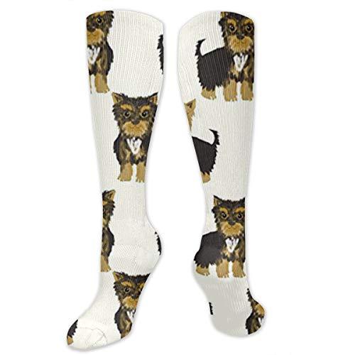 JrexsG Yorkshire Terrier Cute Yorkie Dog Pet Unisex Knee High Soccer Football Sport Tube Tripe Stripe Socks,
