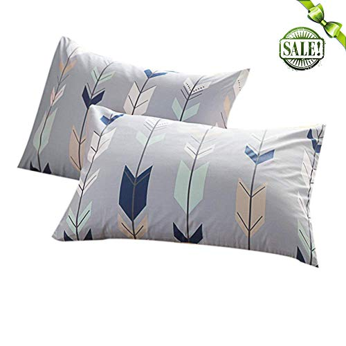 (FenDie Pillow Cases Set of 2 - Arrow Feather Printed Pattern Standard Size (20