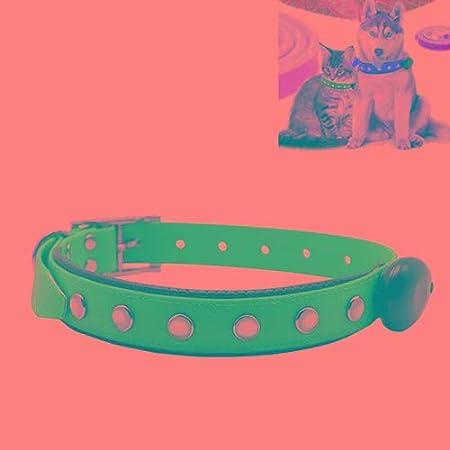 ... Material de PVC Impermeable LED Luz ajustable Collar USB Recargable Perros mascotas Collar, Tamaño del collar: 65 * 2.5 cm Seguridad: Amazon.es: Jardín