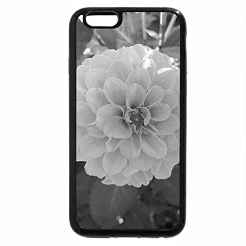 iPhone 6S Plus Case, iPhone 6 Plus Case (Black & White) - A Fine day at the Garden 38