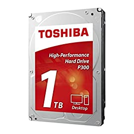 Toshiba America Information Systems P300 Desktop 1 Designed for everyday desktop computing High performance with 7200 RPM and 64 MB cache Built in shock sensors and ramp loading technology