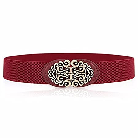 SAIBANGZI Women's Metal Dress Belt Skinny Belt Elastic Waist Strap Stretchy Belts Dresses Decorative Waistband