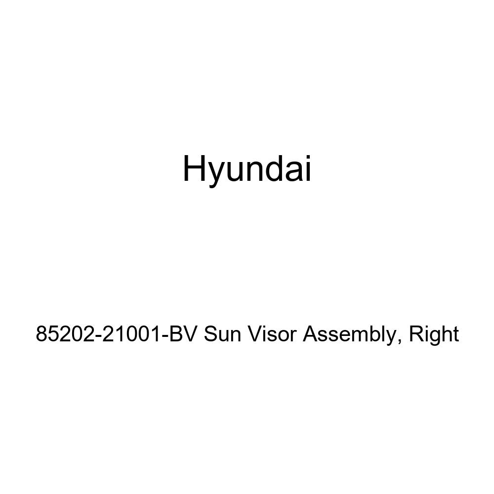 Genuine Hyundai 85202-21001-BV Sun Visor Assembly Right