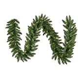 Vickerman Pre-Lit Camdon Fir Garland with 400 Frosted Warm White Italian LED Lights, 50-Feet, Green