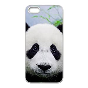 Diy Panda Phone Case For Iphone 5/5S Cover White Shell Phone JFLIFE(TM) [Pattern-4]