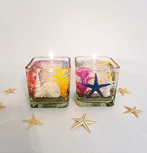 Set of 2 Reusable Gel Wax Candles with Sand Dollars, Star Fish & Sea Shell Embeds