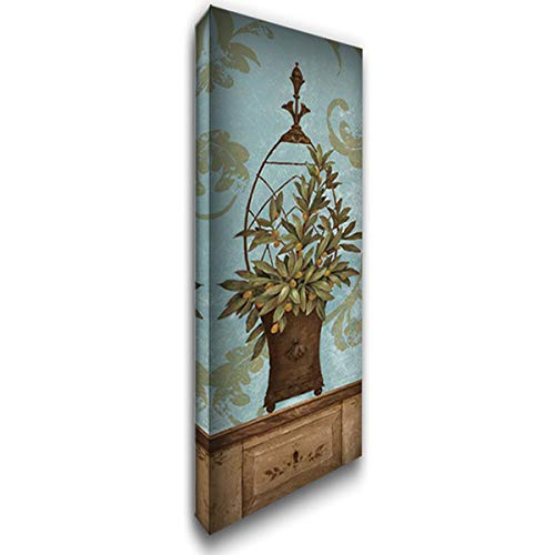 - Blue Olive Topiary II 27x80 Huge Gallery Wrapped Stretched Canvas Art by Gladding, Pamela
