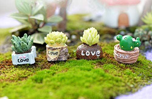 NszzJixo9 Lifelike Mini Artificial Fleshy Cactus, Plant Landscape Decorative - Mini Craft Cottage Landscape Decoration Suitable for Indoor Decoration
