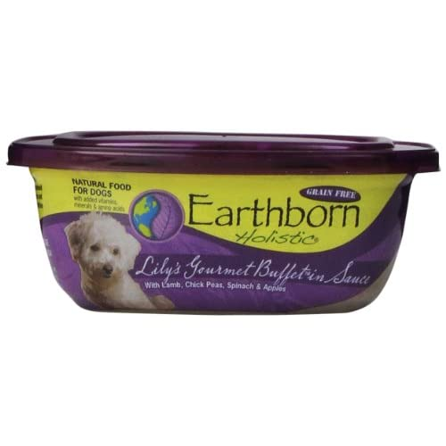 EARTHBORN HOLISTIC Gourmet Buffet Lamb Can Pet Food, 9-Ounce